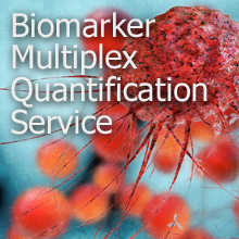 Biomarker Multiplex Quantification Service
